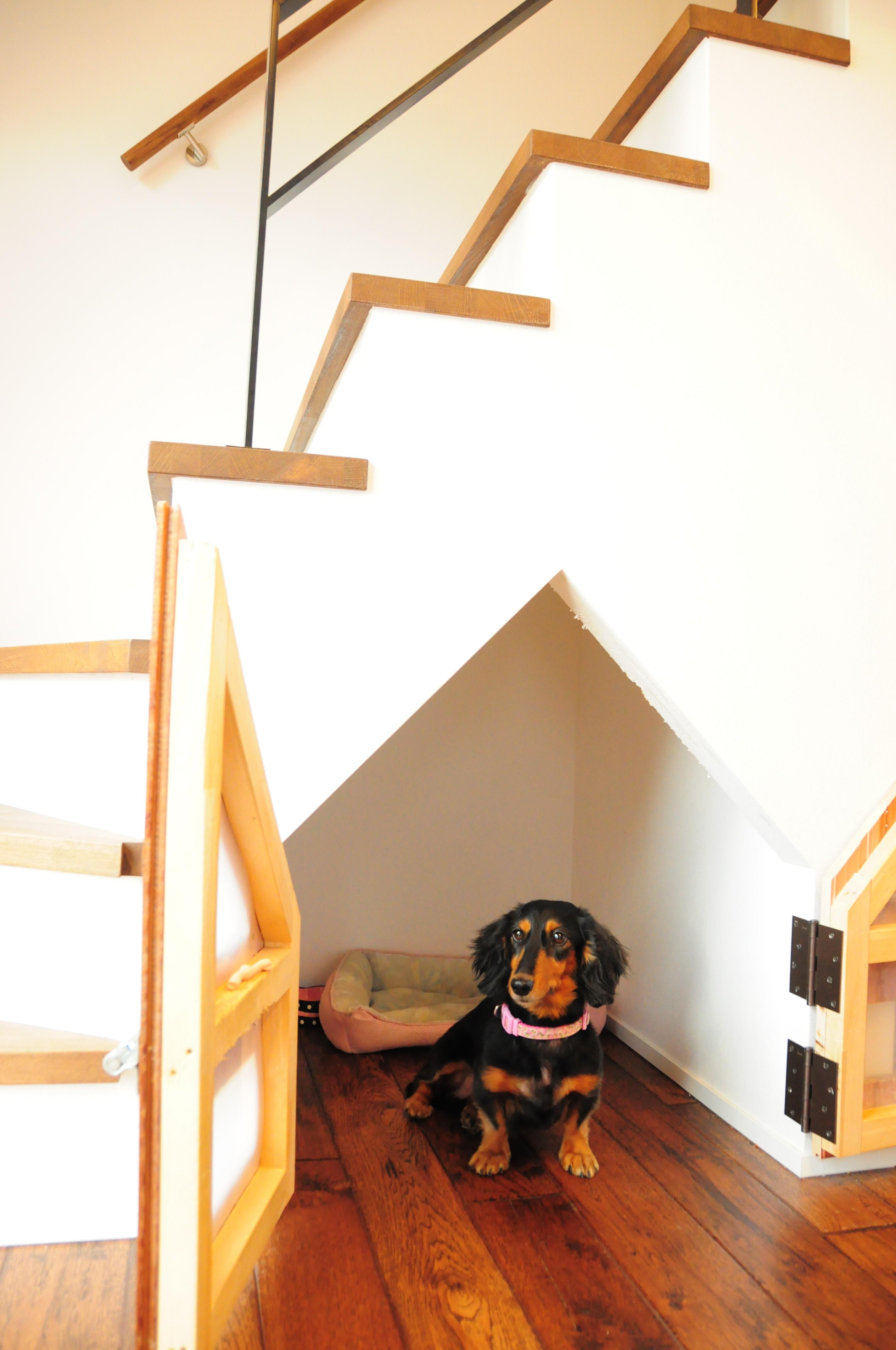 愛犬と家族が楽しく暮らすお家 ヒッコリー ドッグスペース
